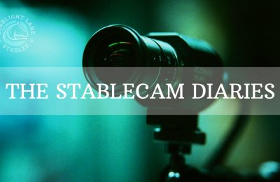 Stable and Arena Cams