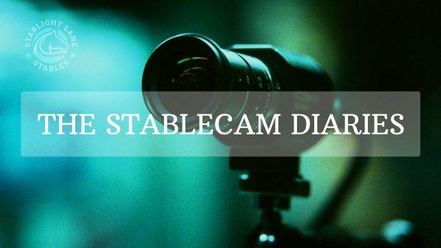 StableCam Diaries – 7 Jan 2021