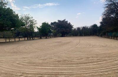 Grass and sand arenas
